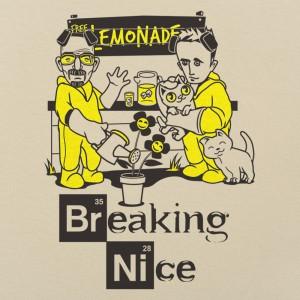 Breaking Nice