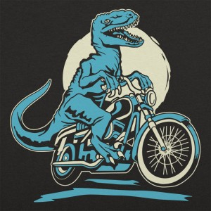 Raptor Cycle