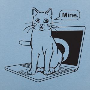 Cat Conquers Laptop