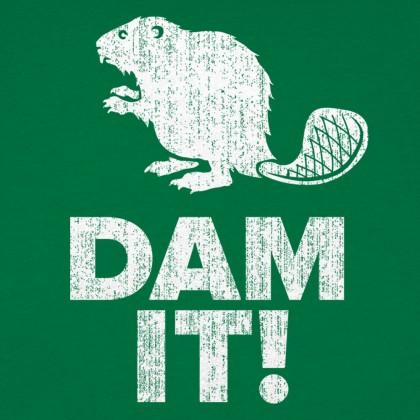 Dam It Beaver!