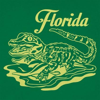 Florida Baby Gator
