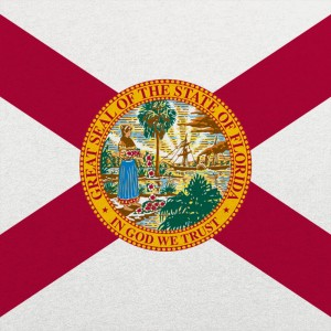 Florida Flag Graphic
