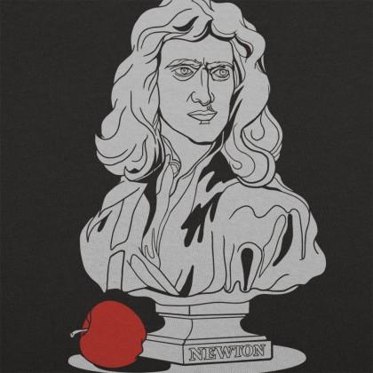 The Vault - Newton