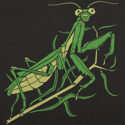 The Vault - Praying Mantis