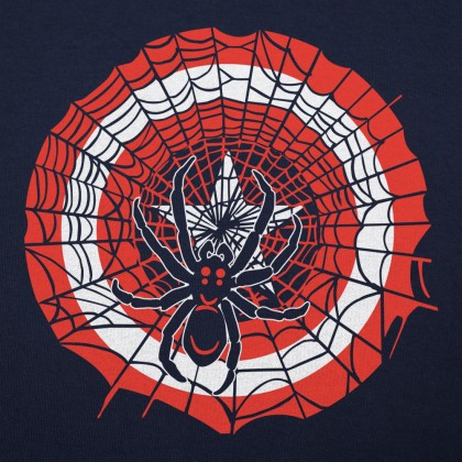 Spider And Star